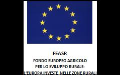 Ente_Feasr